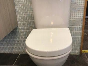 Darling New toilet